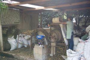 Valhalla Macadamia Farm